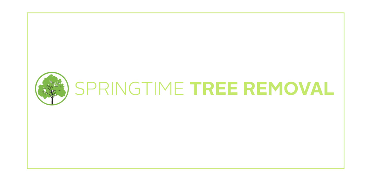 Springtime Tree Removal
